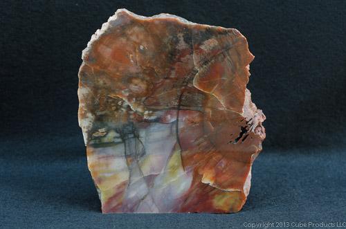 Cube Products LLC - Rockhound Junction: Arizona Petrified